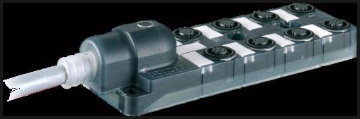 Moduł pasywny Exact12, 8xM12, 4-polowy, bez LED